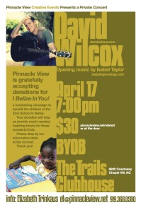 Promotional poster for Pinnacle View event featuring David Wilcox